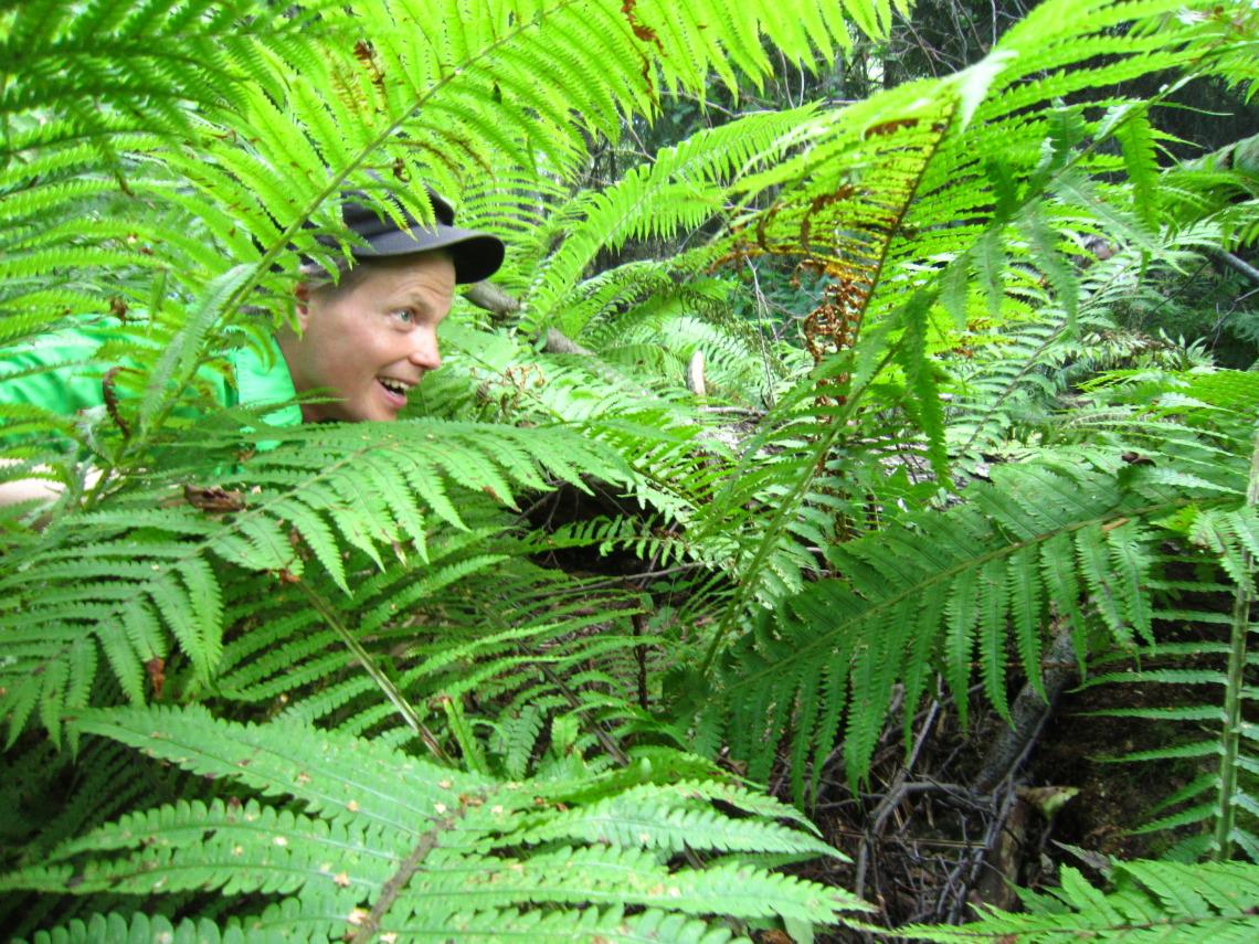 Vävypoika-viidakossa